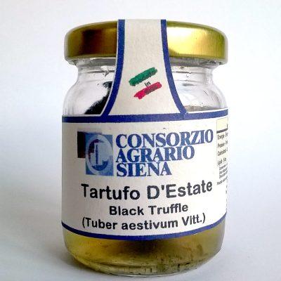 13696 - TARTUFO NERO ESTIVO GR.30